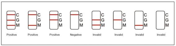Result Interpretation of NewScen COVID-19 IgGIgM Rapid Test Cassette